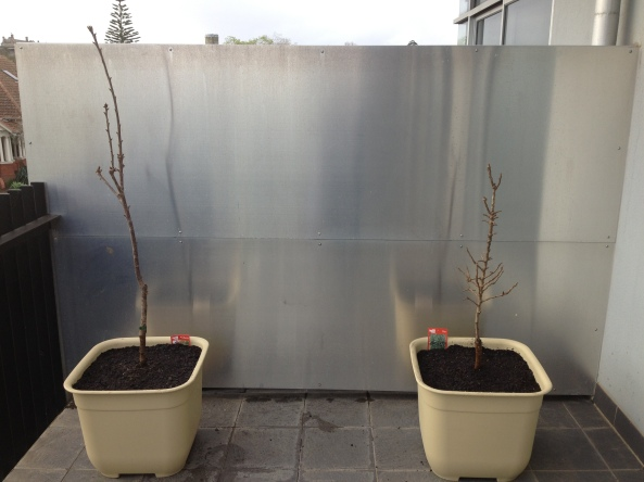 Tree Twig Flowerbox Projects Free Download woodworking ...